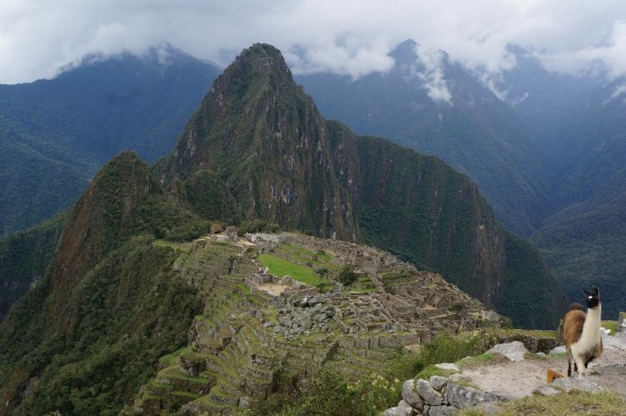 Machu Picchu in all it's glory!