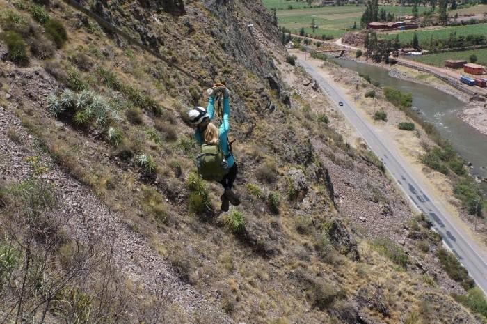 Alison ziplining down