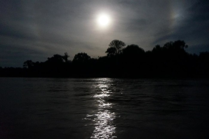 Just a little moonlight lit our way along the river